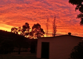 Sunset over the Noyce Brothers vineyard